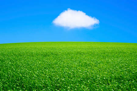 gaping: Grassland and blue sky and gaping cloud