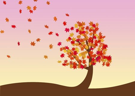 late autumn: Tree of autumn leaves
