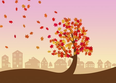 late autumn: Trees and rooftops of autumn leaves