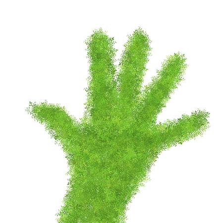green hand: Green hand