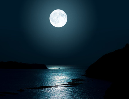 Notte al chiaro di luna del mare Archivio Fotografico - 42377177
