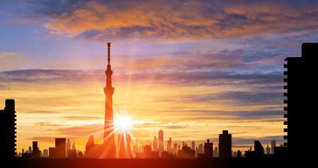 on the lookout: Sky tree and the sun