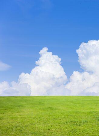 Gras met blauwe hemel