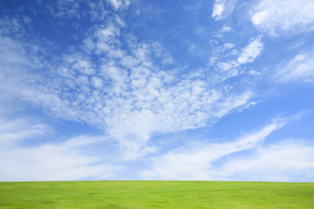 Grass with blue sky 스톡 콘텐츠