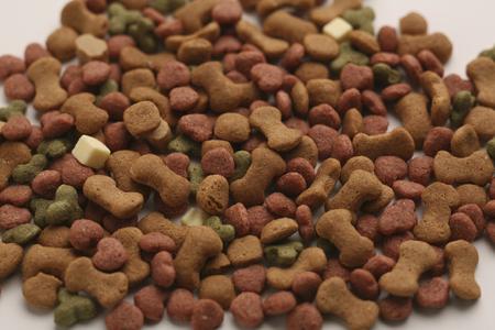 cat food: Cat food