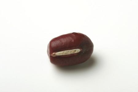 leguminosae: Red bean