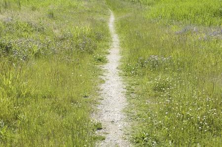 lane: Lane Stock Photo