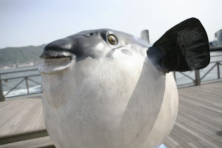 pez globo: Objeto Blowfish Foto de archivo