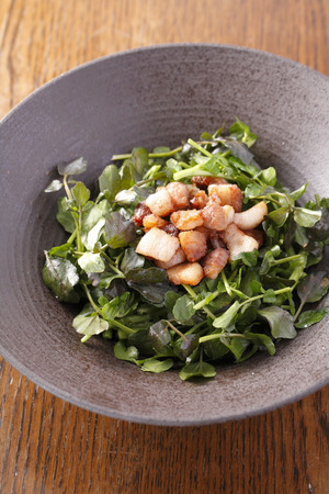 watercress: Watercress salad Stock Photo