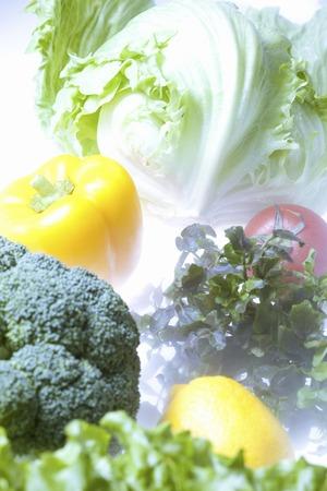 cold storage: Vegetables