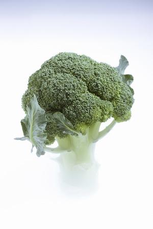 cold storage: Broccoli