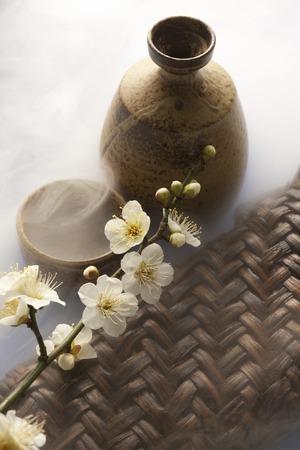 日本酒: Japanese sake and plum flower