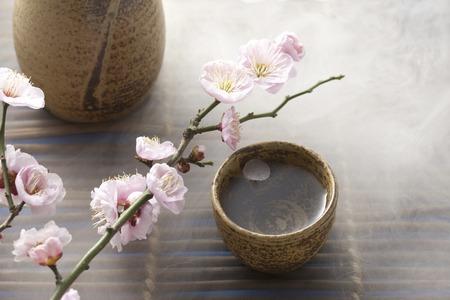 japanese sake: Sake japonés y flor del ciruelo