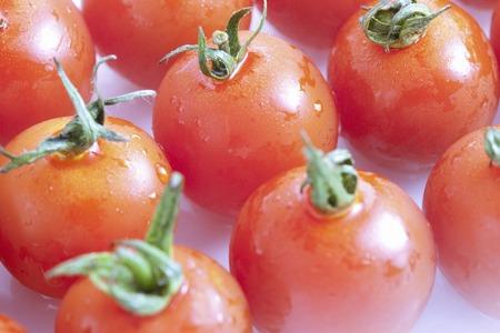 cold storage: Cherry tomato