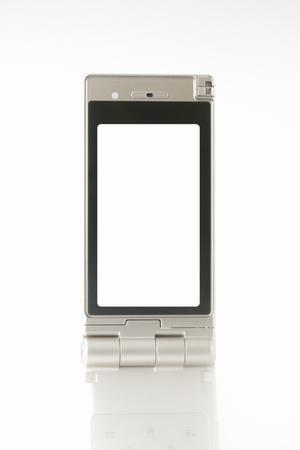 internet terminal: Mobile phone