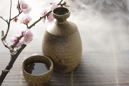 Japanese sake and plum flower