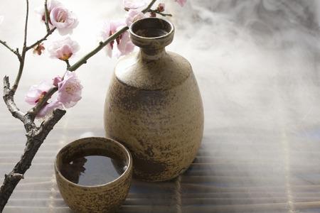 Japanese sake and plum flower