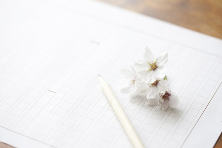 manuscript: Manuscript paper and cherry blossoms