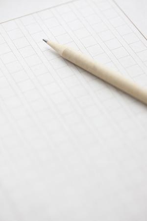 essay: Essay writing