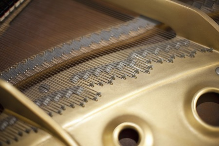 musical instrument parts: Grand Piano