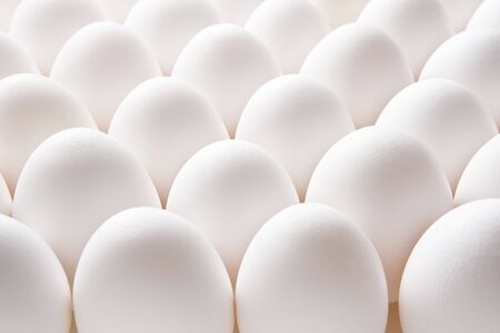 Egg Stockfoto