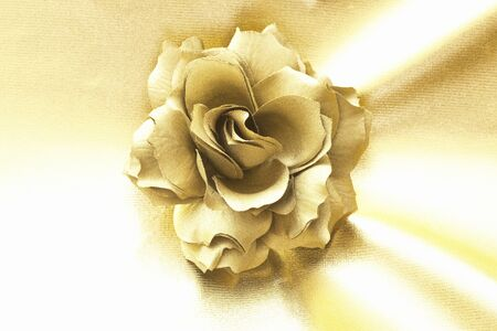 and gold: Gold rose