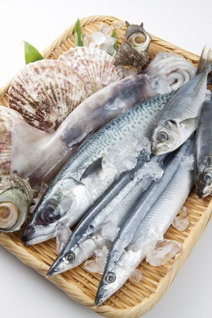 seafood platter: Seafood platter Stock Photo