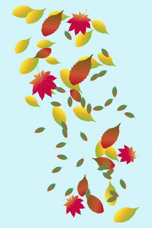 quercus: Autumn leaves