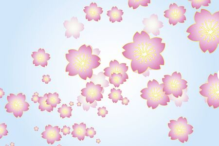 auspicious: Sakura flowers Stock Photo