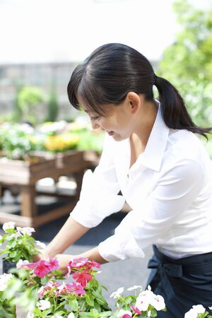 Female flower shop clerk Stock Photo