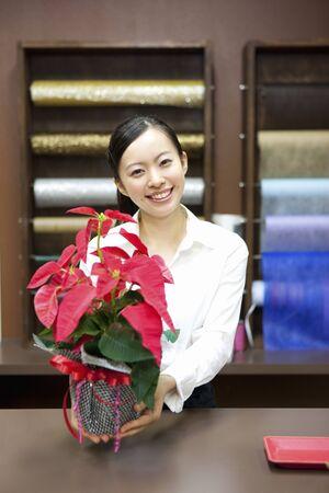 oficinista: Mujer dependiente de la tienda con un Poinsettia