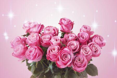 장미의 아름다움 바이오 제르