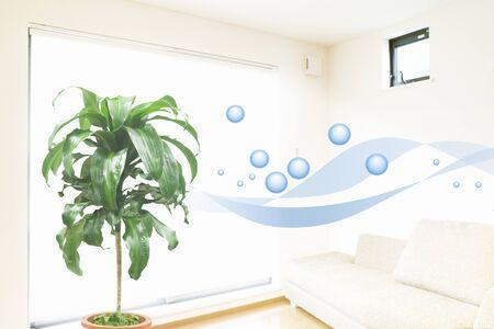 clean window: Clean air Stock Photo