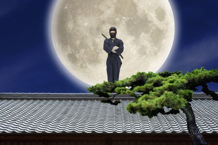 tile roof: Ninja Stock Photo