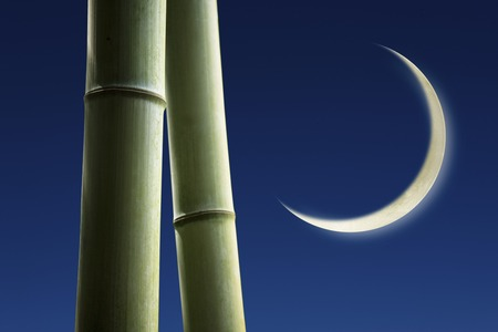 crescent: Bamboo and crescent