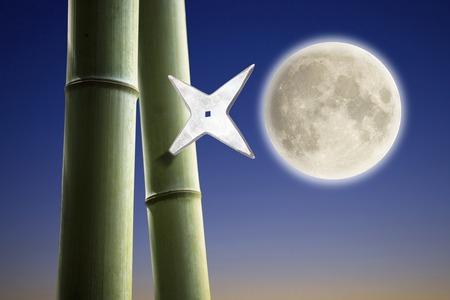 shuriken: Shuriken