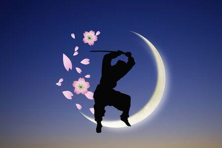 beings: Ninja silhouette Stock Photo