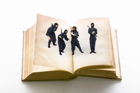 ninjutsu: Ninja and this Stock Photo