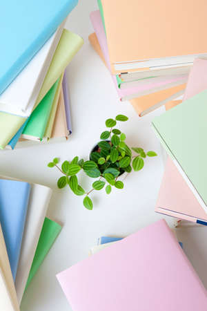 reading materials: Pile of books and plants