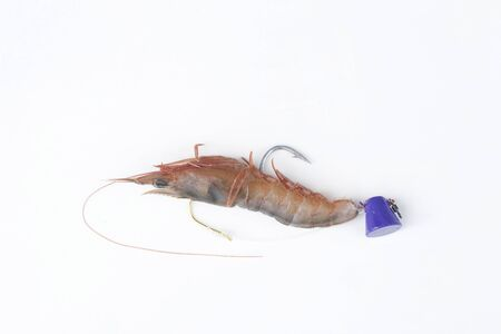 gimmick: Gimmick of sea bream fishing