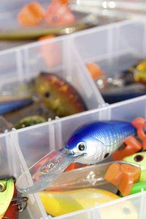 bass fishing: Lures for bass fishing