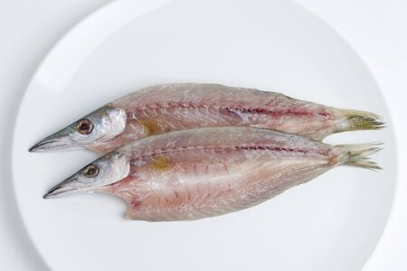 dried fish: Camas of dried fish