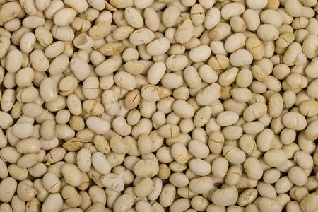 lepra: Soja asado