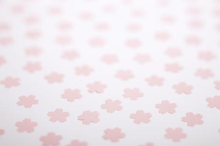 Sakura patterned background photo