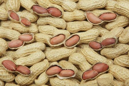 foreigner: Peanut