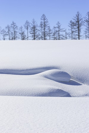 snowscape: Snowscape and Namiki