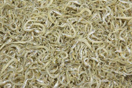 whitebait: Dried whitebait