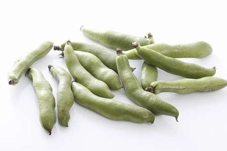 fava: Fava bean Stock Photo
