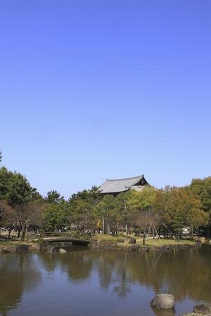nara park: Pond of Nara Park and Todaiji