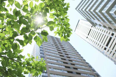 新鮮な緑とマンション